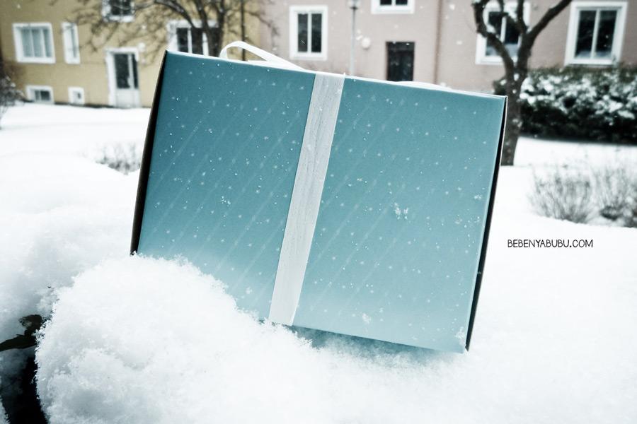 snowcity6