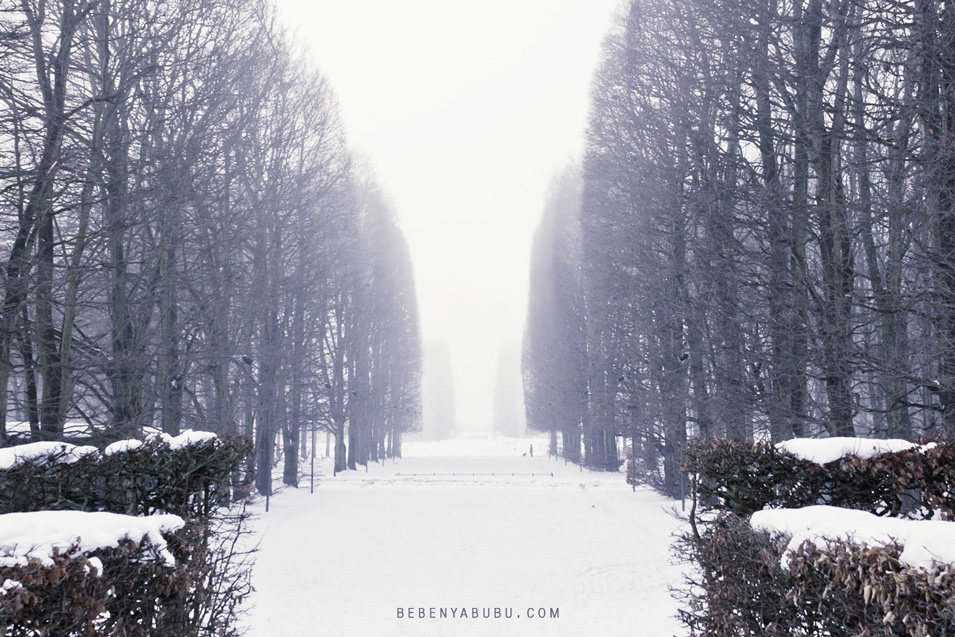 snow2011-04